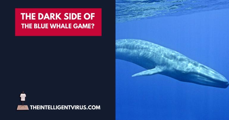 #123 Blue Whale