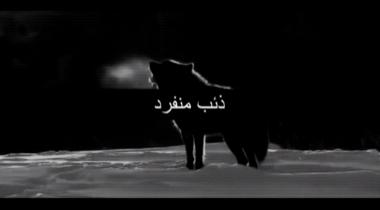 lupi-solitari (1)
